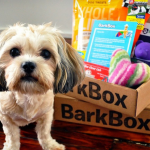 Dog-Subscription Box