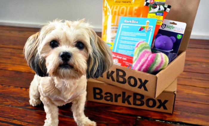 Dog-Subscription Box