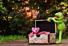 Kermit & Pink Panther Packaging
