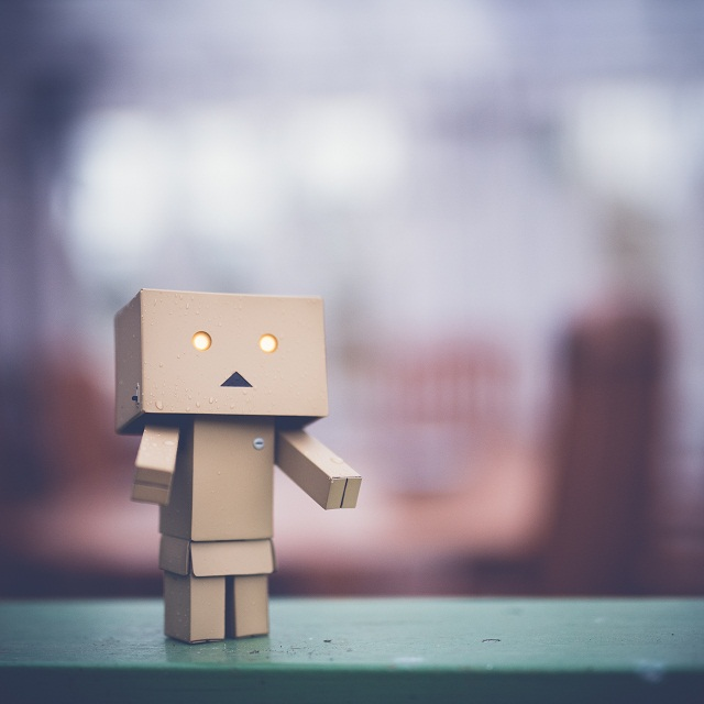 danbo asking