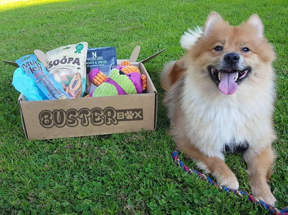 best subscription boxes: busterbox