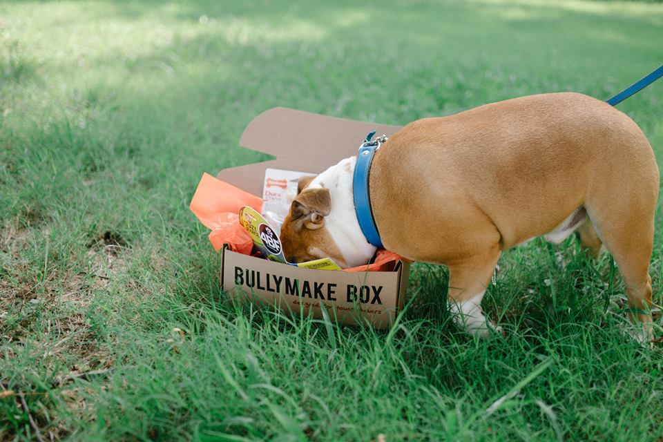 bullymake box subscription box